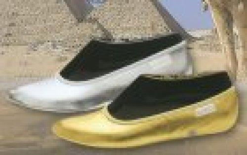 Tanzschuhe Bleyer SPORTI mit Gummisohle gold oder silber